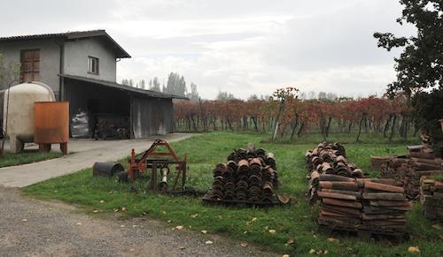 Fattoria degli Orsi 葡萄畑とワイナリー