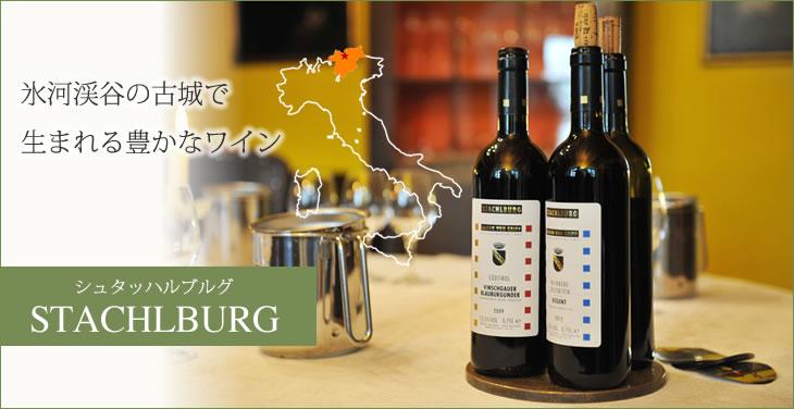 氷河渓谷で豊かなワインを作りだすワイナリー「シュタッハルブルグ」